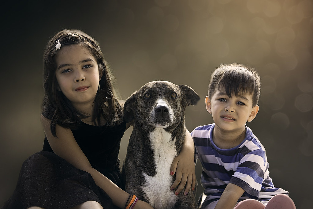 Top 5 Benefits of Having a Dog For a Child