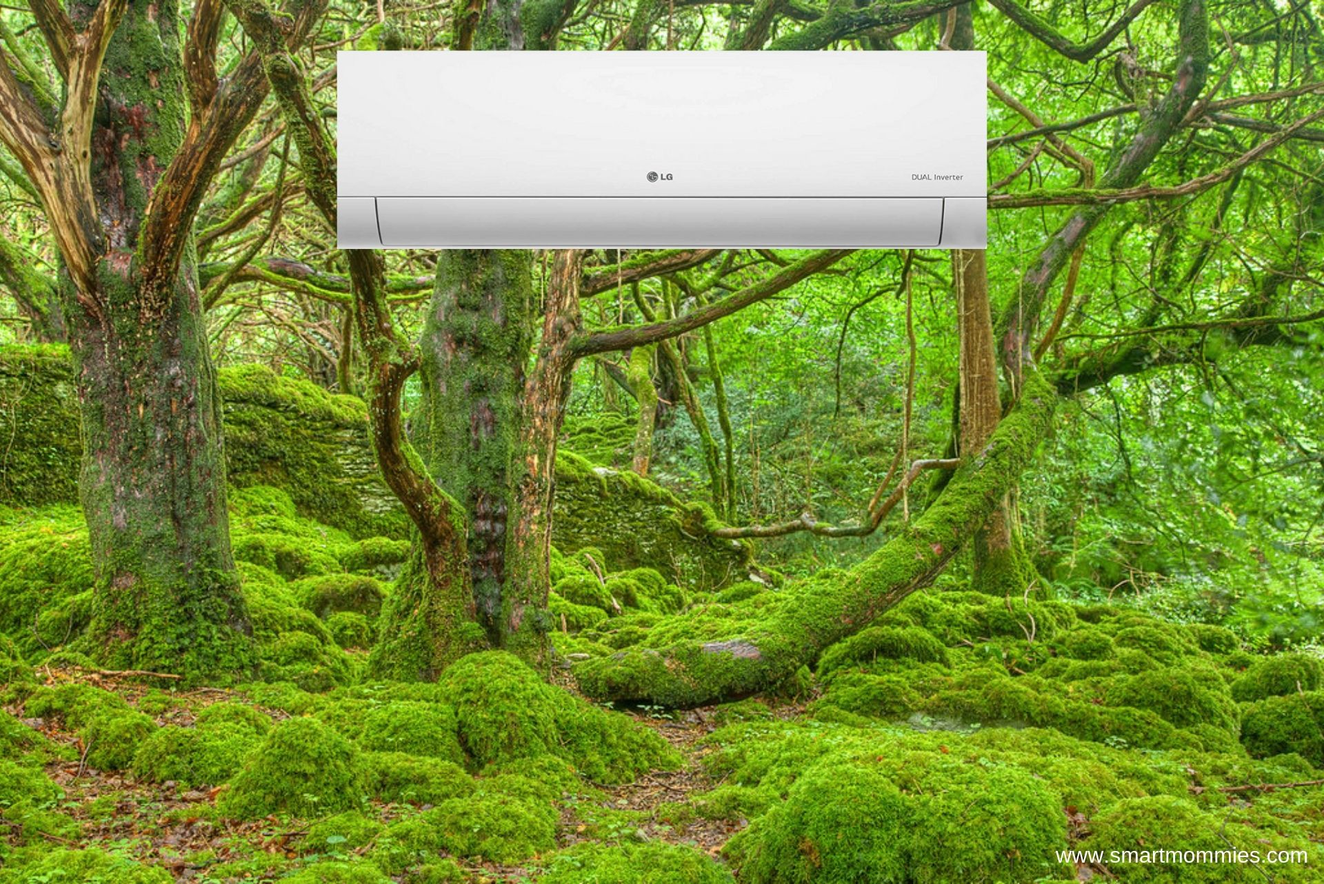 Top 5 Air Conditioner with Air Purifier In India
