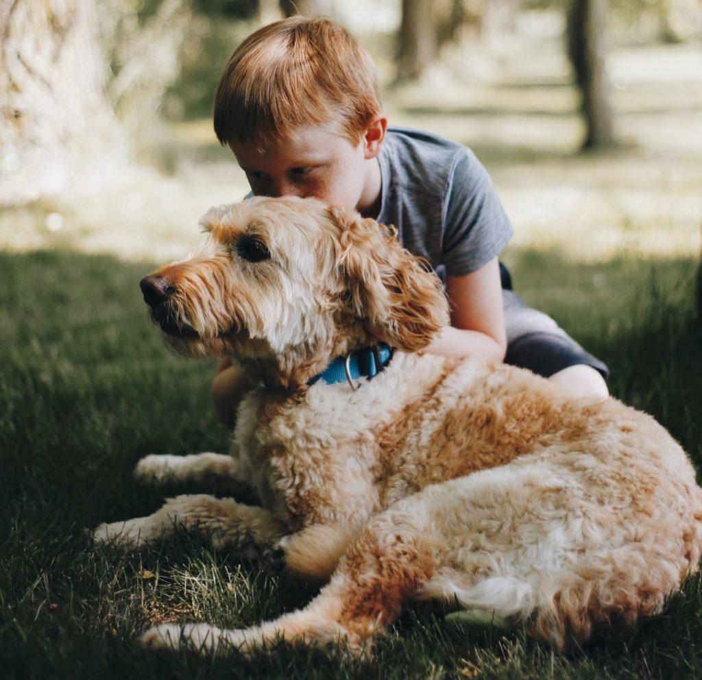 benefits of dog - empathy