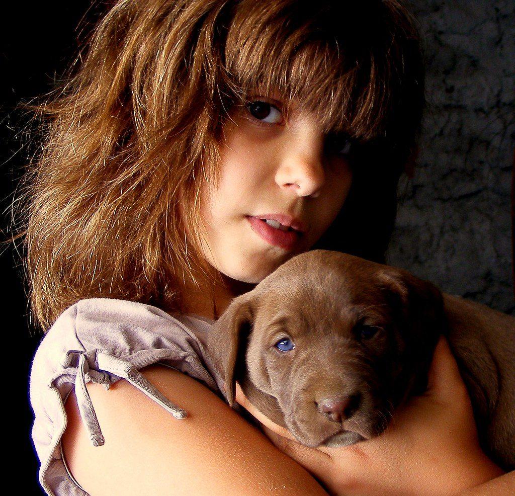 Benefits of Dog - child feel safe