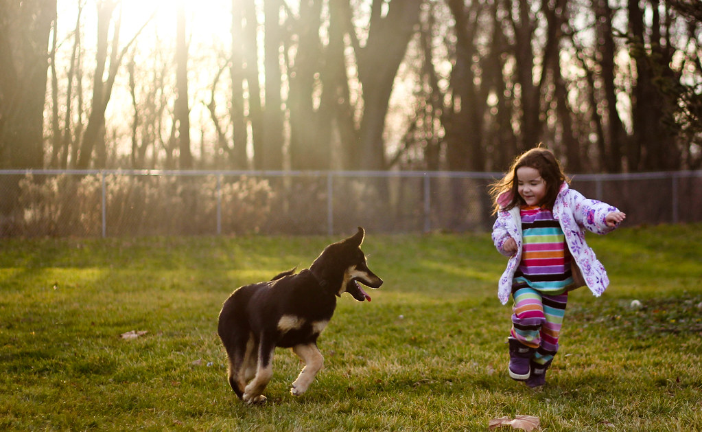 Benefits of Having a Dog for Your Child