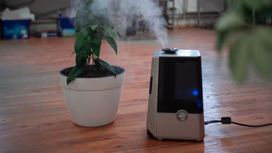 Top 5 Best Humidifier in India